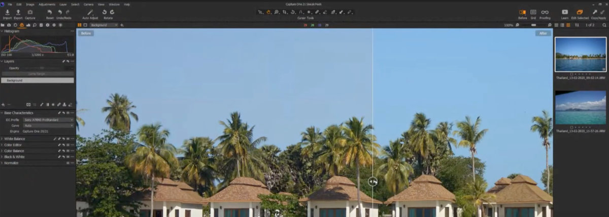 Capture One 21 Pro Standard