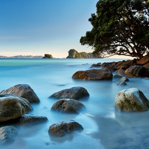 Stingray Bay, Coromandel